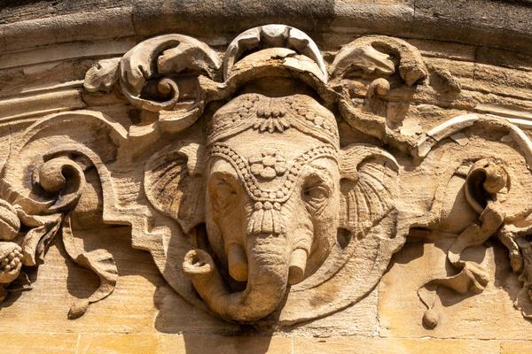 elephant  ind institute