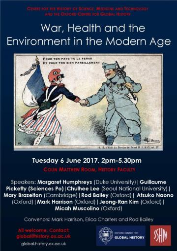 War, health and the environment in the modern age
